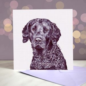 Curly Coat (Black) Greeting Card