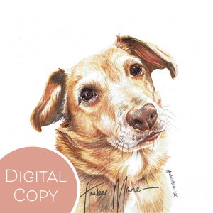 Digital Copies – Watermarked