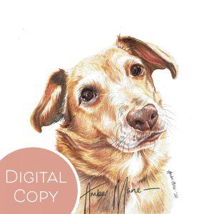 Digital Copies – Watermarked