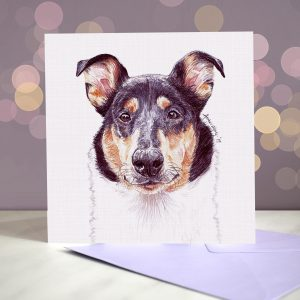 Smooth Collie Greeting Card
