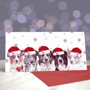 So Collie Maybe – Border Collie Christmas Greeting Card