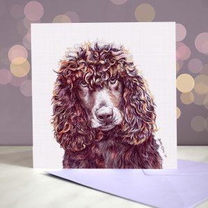 Irish Water Spaniel – Greeting Card