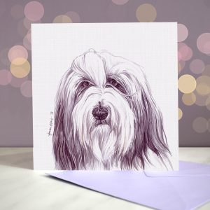 Bearded Collie – Greeting Card