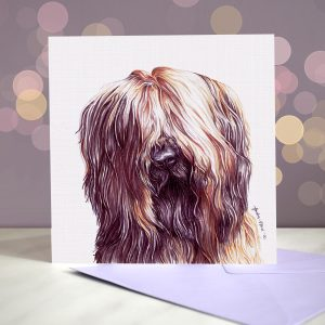 Briard – Greeting Card