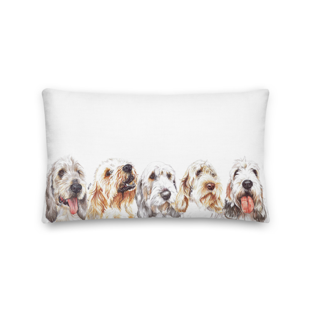 all-over-print-premium-pillow-20×12-front-606832cf00b14.jpg