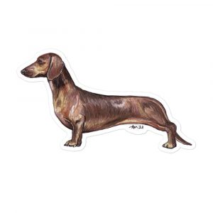 Dachshund Red Smooth – Breed Shaped Stickers
