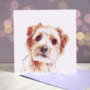 Norfolk Terrier – Greeting Card