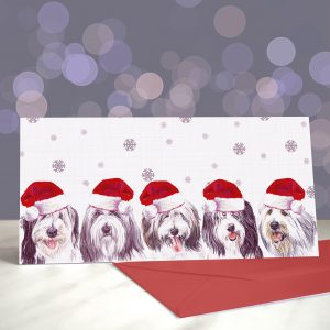 I Can See Beardies Now the Rain Has Gone – Bearded Collie Greeting Cards (Christmas)