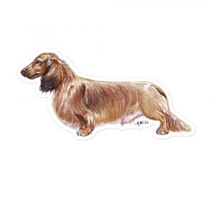 Dachshund – Shaded Red Long Haired – Sticker