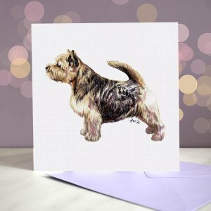 Norwich Terrier – Greeting Card – Stack